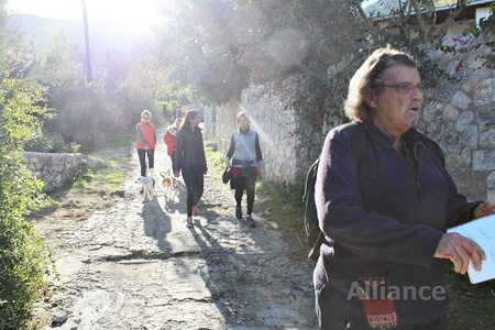 pensioners in Cyprus- Alliance NC