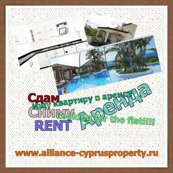 rental property in Cyprus- Alliance NC