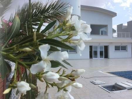 villas in Cyprus for sale - Alliance Estate