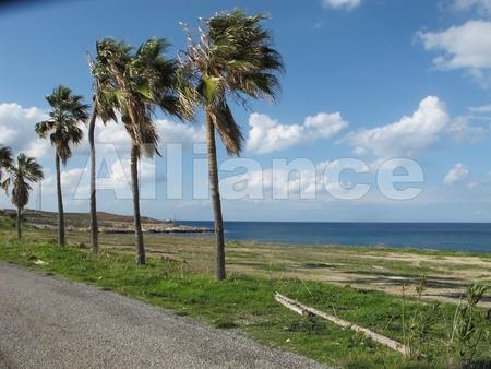 Северный Кипр - Карпаз