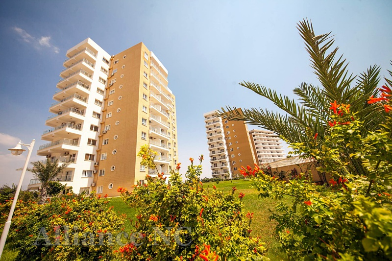 Apartment for rent in Cyprus- Alliance-Estate