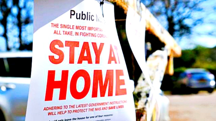 Stay at home - news from Alliance-Estate