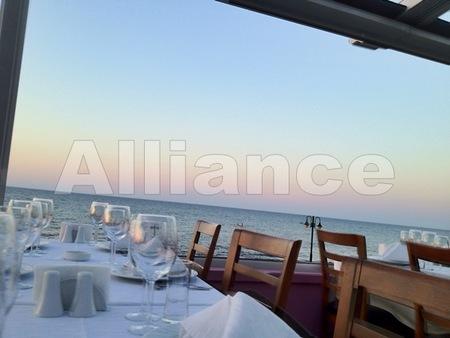 Рестораны Северного Кипра