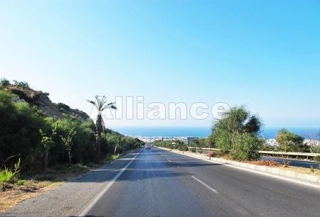 Правила движения на Северном Кипре