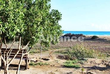 Cyprus vocation, hotels in Karpaz