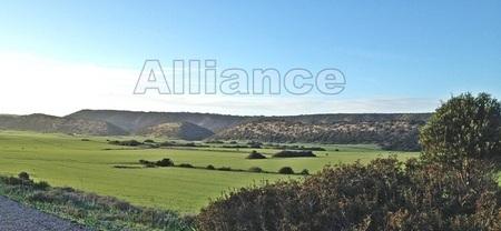 Северный Кипр -сельское хозяйство