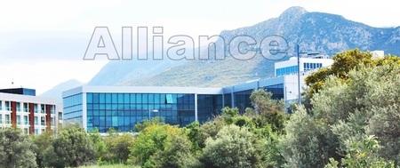 Университеты на Северном Кипре