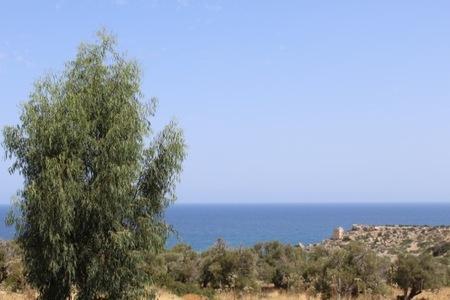 инвестиции в недвижимость на Кипре - Альянс