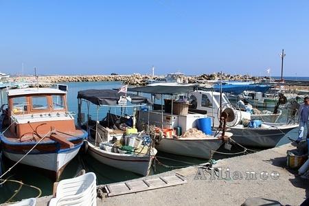 Поселения на Кипре, Богаз